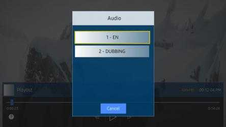 Screenshot 4 de DuplexPlay para windows