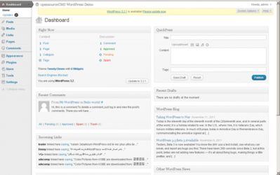 Imágen 1 de WordPress para windows