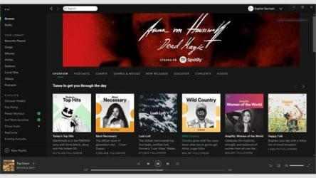 Captura 1 de Spotify para windows