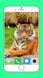 Imágen 5 de Zoo  Full HD Wallpaper para android
