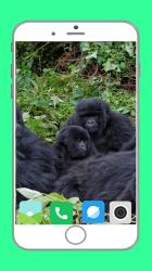 Captura de Pantalla 10 de Zoo  Full HD Wallpaper para android
