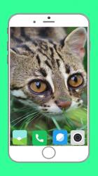 Captura de Pantalla 9 de Zoo  Full HD Wallpaper para android