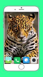 Imágen 3 de Zoo  Full HD Wallpaper para android