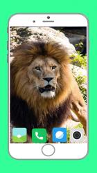 Captura de Pantalla 4 de Zoo  Full HD Wallpaper para android