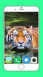 Screenshot 7 de Zoo  Full HD Wallpaper para android