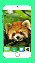 Captura 13 de Zoo  Full HD Wallpaper para android