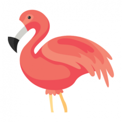 Screenshot 1 de Flamingo Animator para android