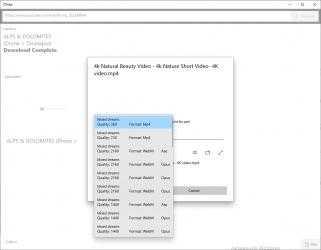 Captura 4 de DTube - 4K Youtube Downloader (Unofficial) para windows