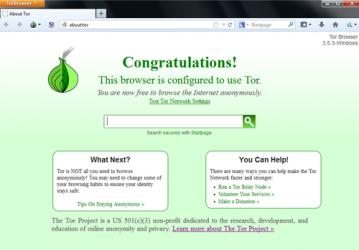 Captura 3 de Tor para windows