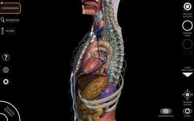 Screenshot 8 de Anatomía - Atlas 3D para windows