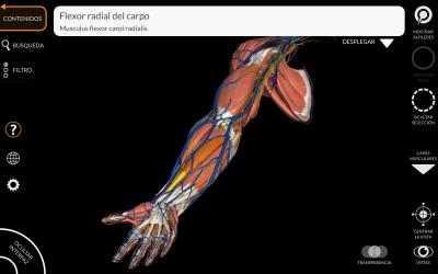 Captura de Pantalla 7 de Anatomía - Atlas 3D para windows