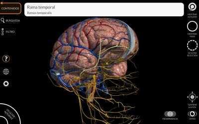 Screenshot 9 de Anatomía - Atlas 3D para windows