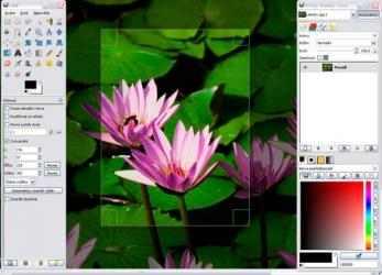 Screenshot 3 de GIMP para windows