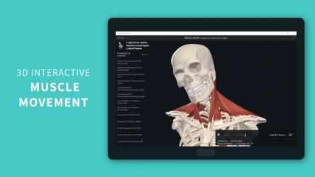 Captura 1 de Complete Anatomy 2021 para windows