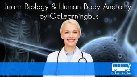 Screenshot 2 de Learn Biology and Human Body Anatomy by GoLearningBus para windows