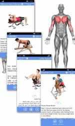 Screenshot 5 de Fitness & Bodybuilding para windows