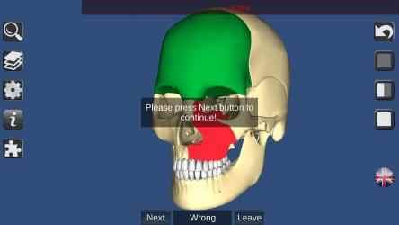 Captura 6 de 3D Bones and Organs (Anatomy) para windows