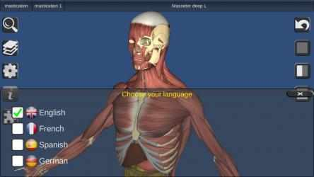 Screenshot 5 de 3D Bones and Organs (Anatomy) para windows