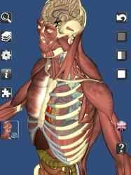 Imágen 1 de 3D Bones and Organs (Anatomy) para windows