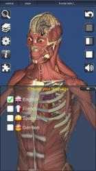Screenshot 13 de 3D Bones and Organs (Anatomy) para windows