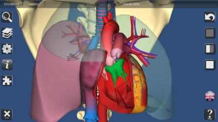 Captura de Pantalla 9 de 3D Bones and Organs (Anatomy) para windows