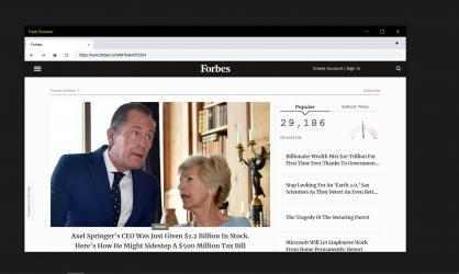 Captura de Pantalla 1 de Flash Browser para windows