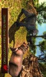 Captura de Pantalla 11 de Wild Animal Simulator-Life of Gorilla para windows