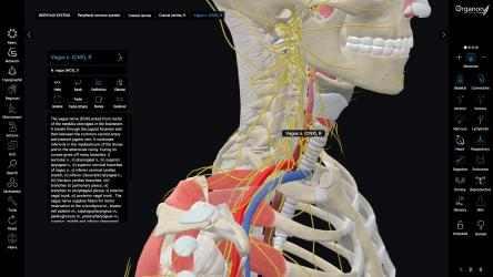 Screenshot 5 de 3D Organon Anatomy - Enterprise Edition para windows