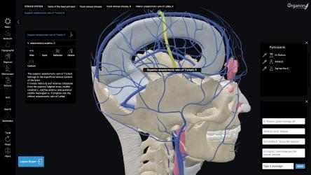 Screenshot 9 de 3D Organon Anatomy - Enterprise Edition para windows