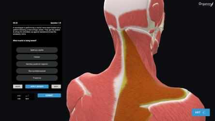 Captura 7 de 3D Organon Anatomy - Enterprise Edition para windows