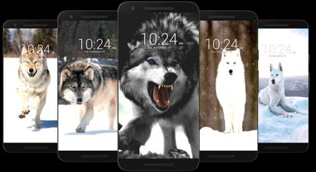 Captura 8 de Fondo de pantalla de lobo HD para android