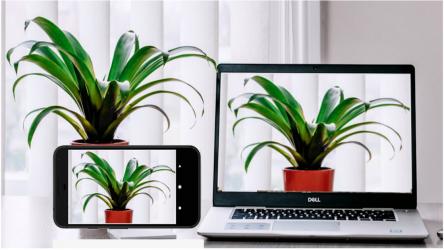 Captura 3 de Iriun 4K Webcam for PC and Mac para android