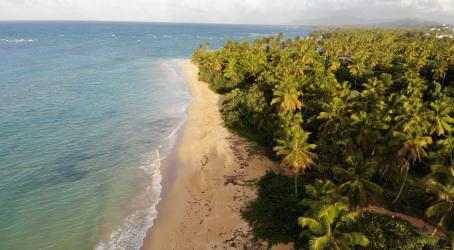 Captura 2 de Tropical Beach 4k Live Wallpaper para windows