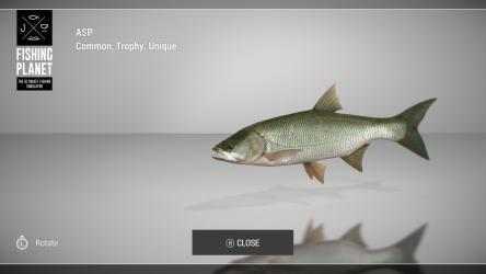 Captura de Pantalla 11 de Fishing Planet para windows