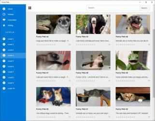 Imágen 2 de Funny Pets para windows